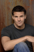 David Boreanaz - Self Assignment 2006