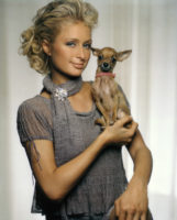 Paris Hilton - Confessions of an Heiress 2004