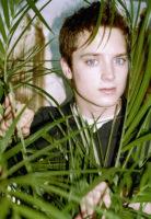 Elijah Wood - Evening Standard 2001